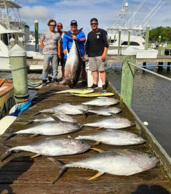 Tuna fishing charter in Pirates Cove