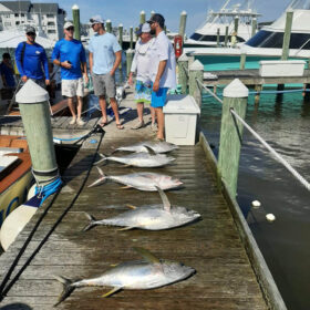 Tuna fishing charter in the Outer Banks