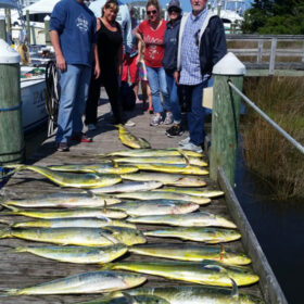Mahi Charter Fishing