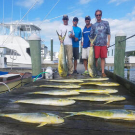 Sport Fishing for mahi in OCMD