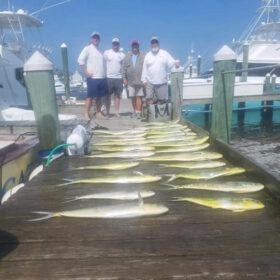 Doirado Charter Fishing