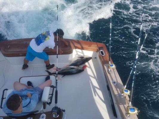 Tuna fishing in Ocean City Maryland charter