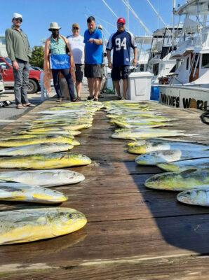 Mahi Charter sport fishing charter
