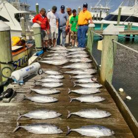 Tuna charters in Pirates Cove, North Carolina
